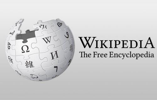 Wikipedia kurucusuna Türkiye'den şok karar