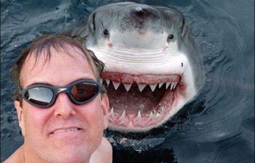 Dünyanın en tehlikeli selfie'leri