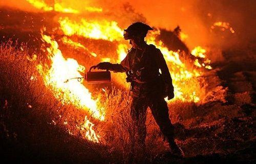 HP, orman yangınında arşivlerini kaybetti!