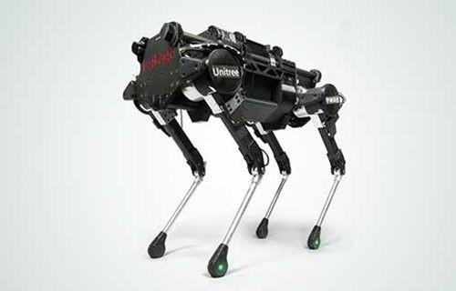 Robot evcil hayvanla tanışın!