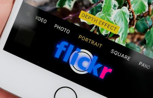 iPhone, Flickr'da Canon ve Nikon'u solladı