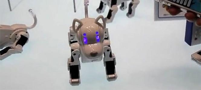 İşte robot köpek i-SODOG