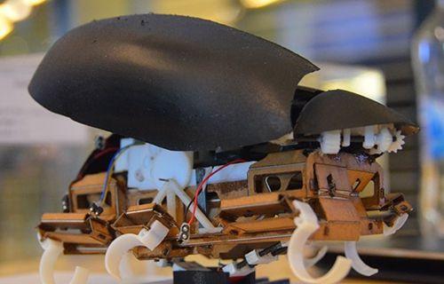 1,5 metreye kadar zıplayabilen robot böcek üretildi