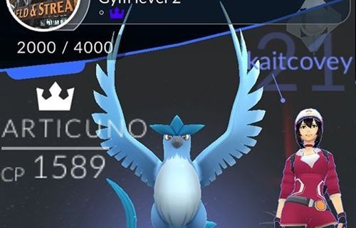Pokemon Go'nun ilk efsanevi kuşu yakalandı!