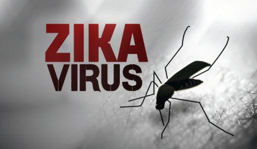 Google'dan ZIKA virüsüyle mücadele için büyük bağış!